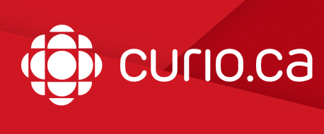 Image result for curio site activités